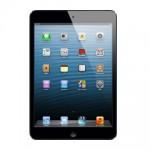 iPad mini 正面写真